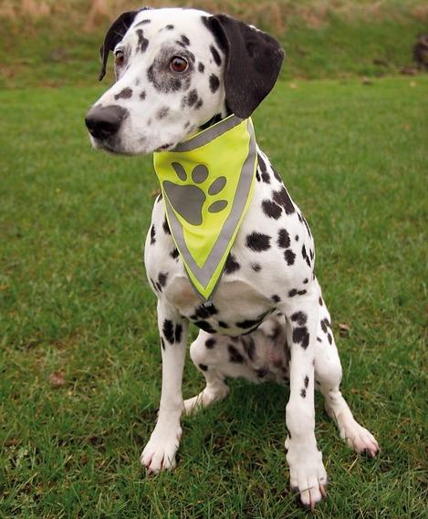 Бандана светоотражающая для собаки Trixie Safer Life Safety Neckerchief