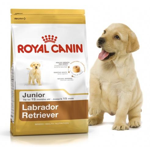 Royal Canin (Роял Канин) Labrador Retriever Junior 33 Корм для щенков лабрадоров ретриверов