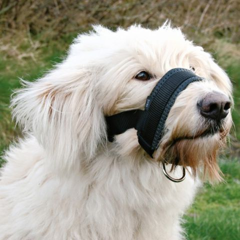 Trixie - 19281 Намордник для собак из нейлона