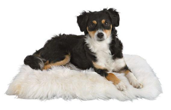 Trixie Sheepskin Cushion Мягкая подушка для собак и кошек из овчинного меха