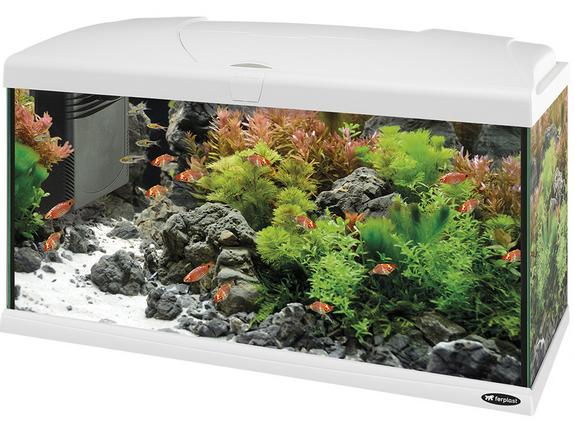 Прямоугольный аквариум FERPLAST CAPRI 80 - белого цвета