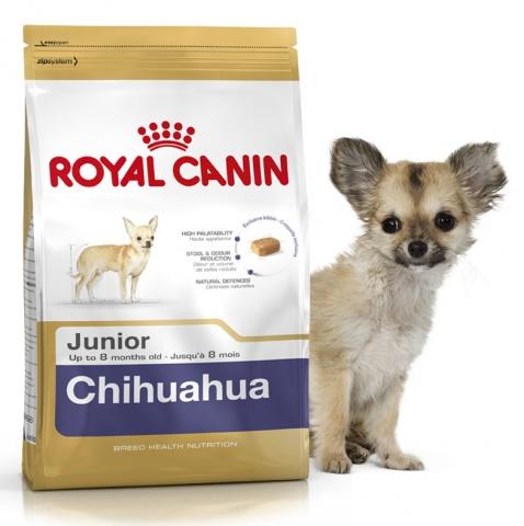 Royal Canin Chihuahua Junior Корм для щенков породы чихуахуа