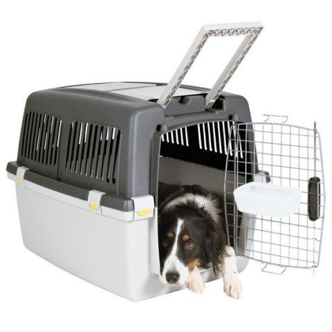 перевозка для собак в самолете
