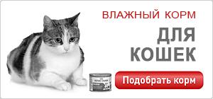 Влажный корм / консервы для кошек Роял Канин • Royal Canin