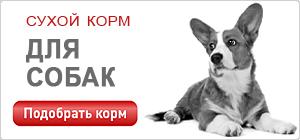 Сухой корм для собак и щенков Роял Канин • Royal Canin