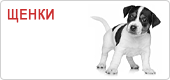 Сухой корм для щенков Роял Канин • Royal Canin