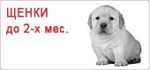 Сухой корм для щенков до 2-х месяцев Роял Канин • Royal Canin